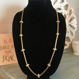 Ann Taylor Gold Tone Long Necklace